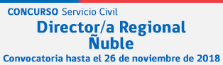 Director Ñuble