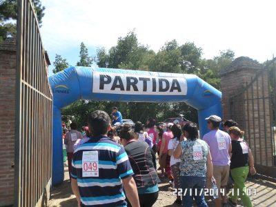 SENDA certifica a 27 colegios de la Araucanía como establecimientos preventivos