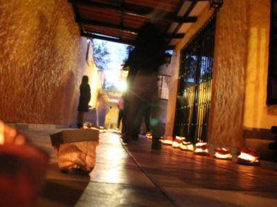 SENDA participa en feria informativa de programas sociales en Concepción