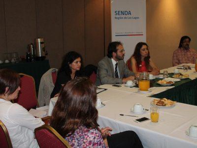 SENDA abre convocatoria para III versión de festival preventivo en Río Bueno