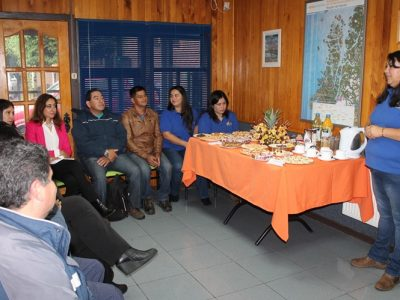 Comunidad de Paine conoce campaña para prevenir accidentes por alcohol