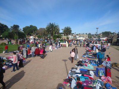Exitosa Feria de SENDA Previene en Pichilemu