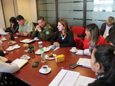 SENDA Araucanía participa en subcomité de seguridad pública