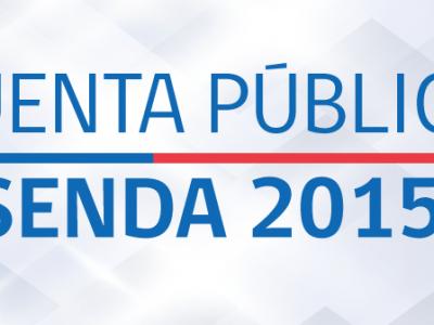 Director de SENDA y Cuenta Pública 2015: «Queremos proteger la salud de la población como un derecho social fundamental»