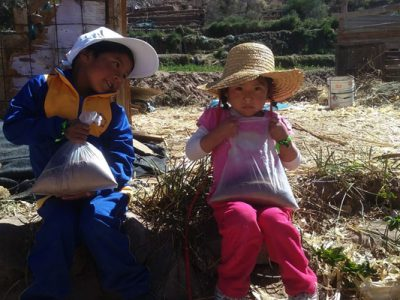 Párvulos de Camiña instalan cultura preventiva con creación de  huertos verticales
