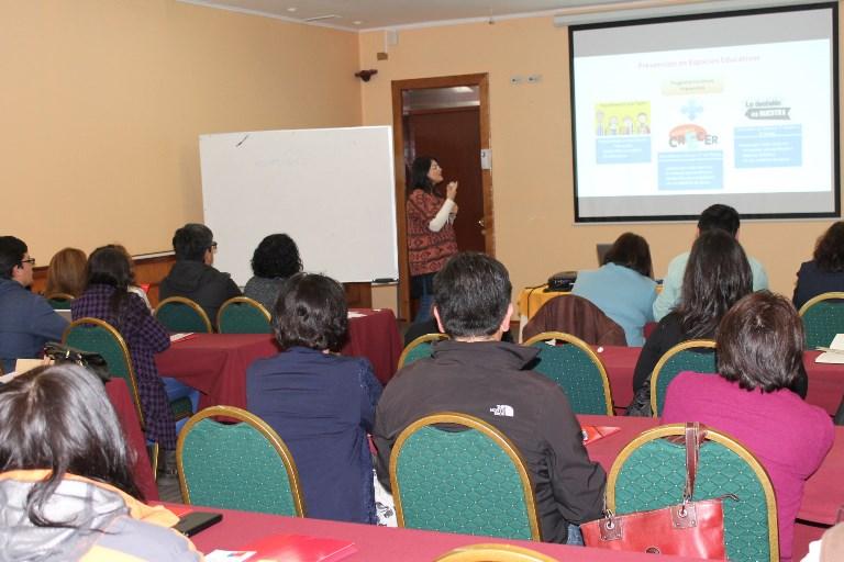Exponen oferta programática de SENDA en reunión regional de DIBAM