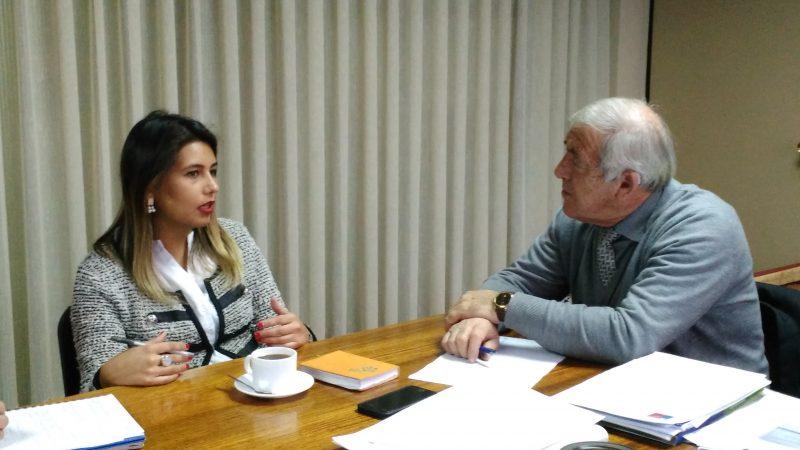 Directora Regional acuerda trabajo en prevención con comuna de Pitrufquén