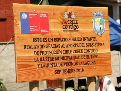 Control Cero Alcohol realizó 20 mil alcotest preventivos en Araucanía
