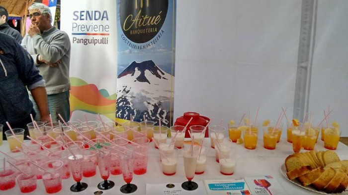 SENDA Previene Panguipulli participó en feria costumbrista de Melefquén por Fiestas Patrias