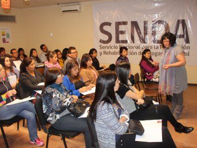 Profesionales  y técnicos de SENDA reciben capacitación sobre abordaje de violencia contra las mujeres