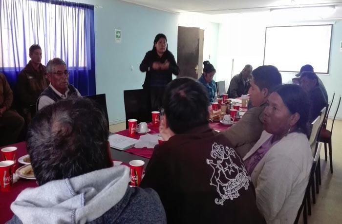 Magallanes: directora se reúne con intendente y participa en mesa intersectorial