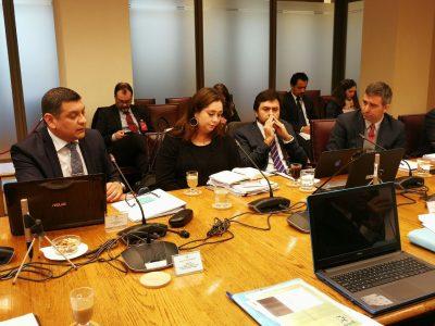 SENDA expuso ante comisión del Senado por proyecto que crea el Servicio Nacional de Reinserción Social Juvenil