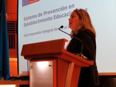 Más de 6 mil jóvenes se unieron a la campaña de verano en Chiloé