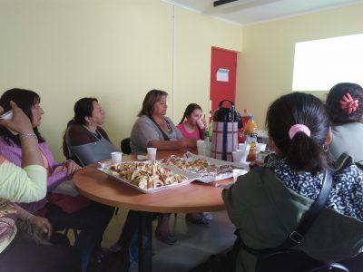 Campaña de verano se instaló en Parque Nacional Radal Siete Tazas