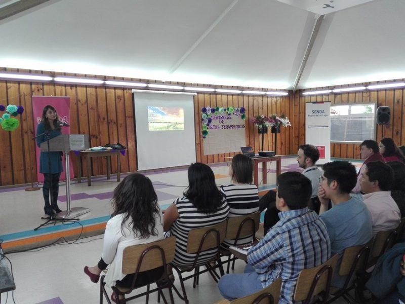 Exitosamente 7 personas egresan de centro de tratamiento en Purranque y demuestran que es posible superar adicción al consumo de drogas y alcohol