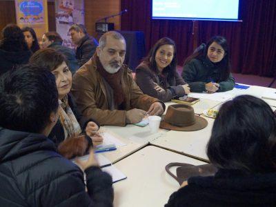 Araucanía arrasa en participación de encuesta ciudadana SENDA
