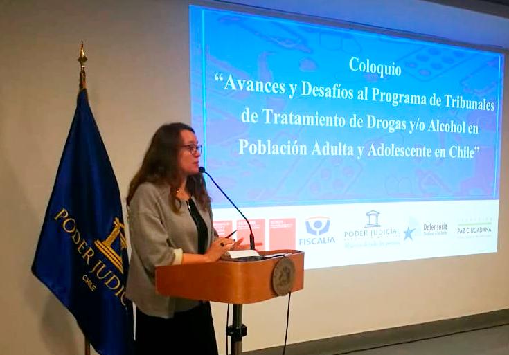 SENDA participó en Coloquio sobre Avances y Desafíos del programa de Tribunales de Tratamiento de Drogas