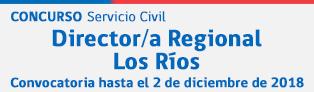 Director/a Regional de Los Ríos