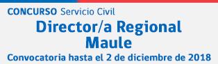 Director/a Regional SENDA Maule