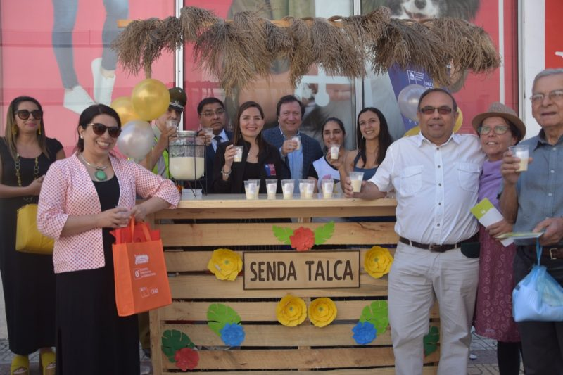 Tolerancia Cero Alcohol en estas fiestas de fin de año fue el mensaje entregado por el Gobierno  del Maule y el municipio talquino